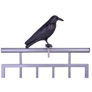 Corvo Spaventa Uccelli