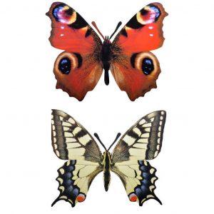 Decoro Per Muro A Forma Di Farfalla Assortito