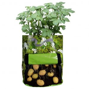 Sacco Per Coltivare Le Patate