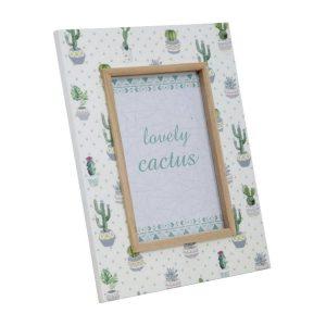 Cornice cactus